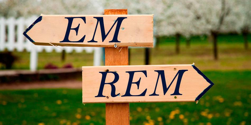 REM vs EM – Великий спор - 1