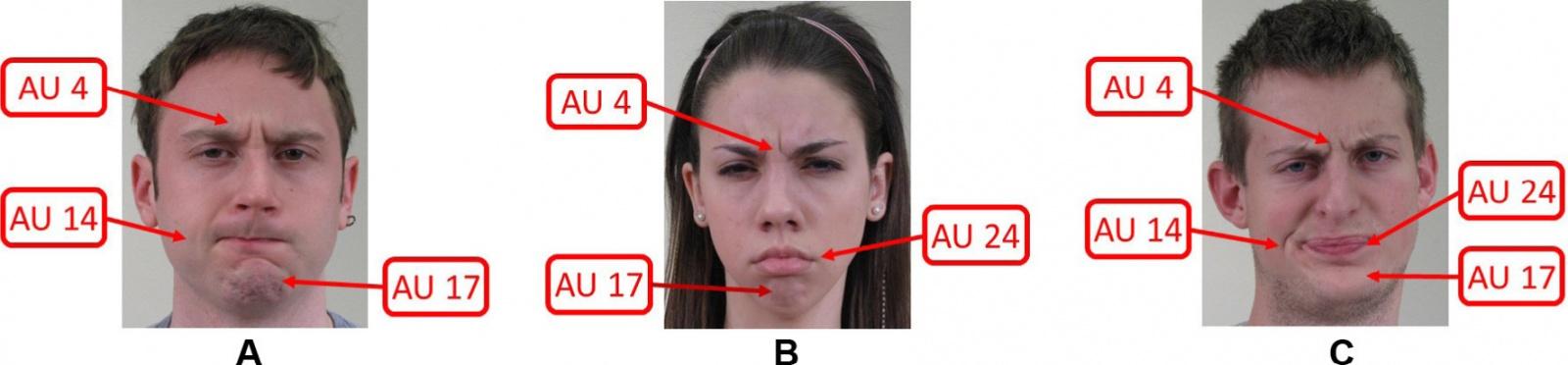 Определено новое универсальное выражение лица, понятное всем людям на Земле - 3
