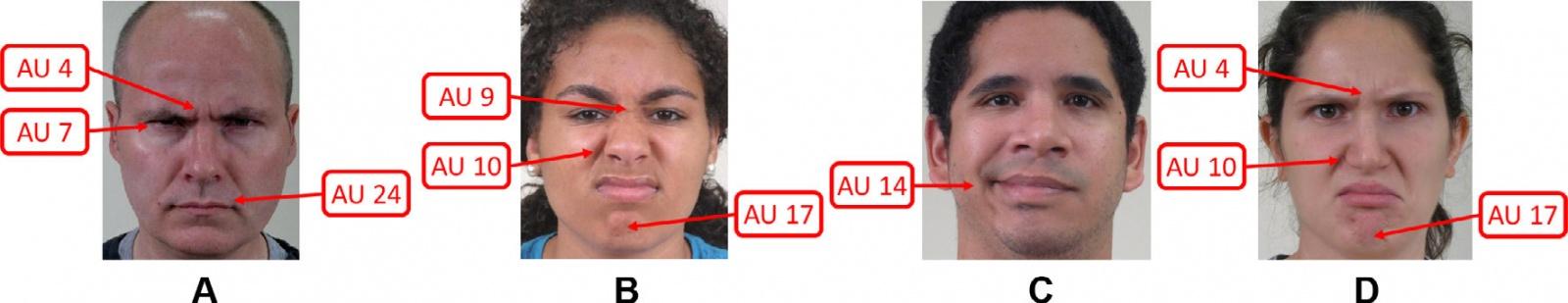 Определено новое универсальное выражение лица, понятное всем людям на Земле - 1