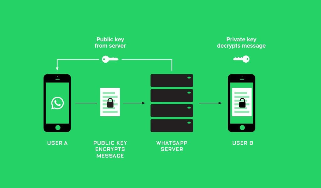 WhatsApp ввел полное end-to-end шифрование всех данных для миллиарда своих пользователей - 3