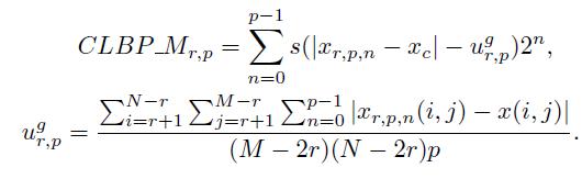 Обзор дескрипторов изображения Local Binary Patterns (LBP) и их вариаций - 12
