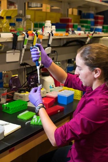 Ученым удалось успешно сохранить изображения в ДНК и считать их - 3