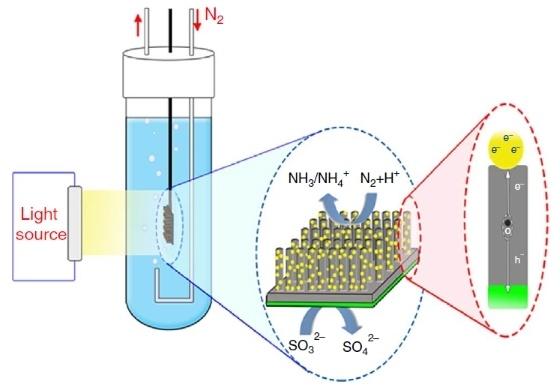 Фиксация азота по-новому - 3
