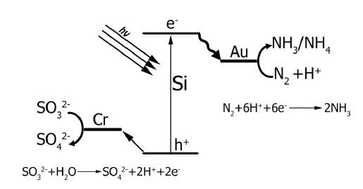 Фиксация азота по-новому - 4