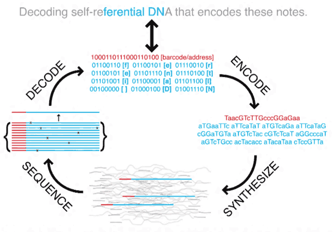 Microsoft закупила 10 млн нитей синтетической ДНК - 2