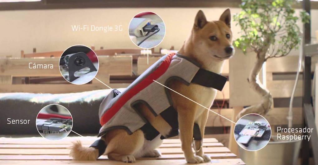 Гаджет Posting Tail превращает собаку в блоггера - 1