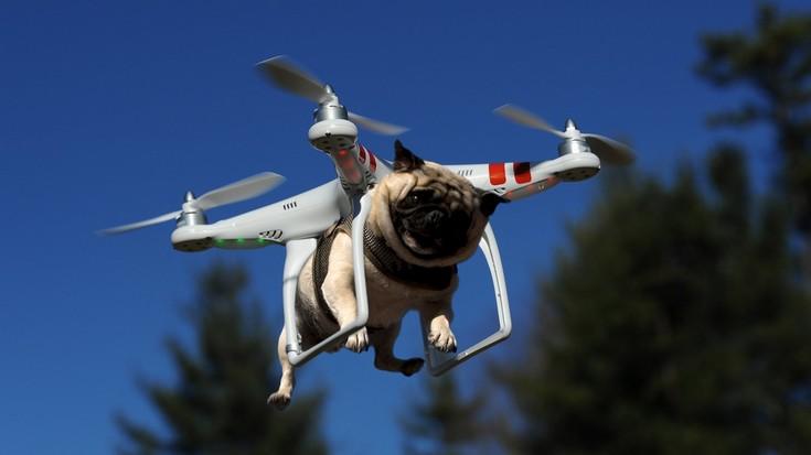 FAA обещает завершить разработку норм для малых дронов до конца весны