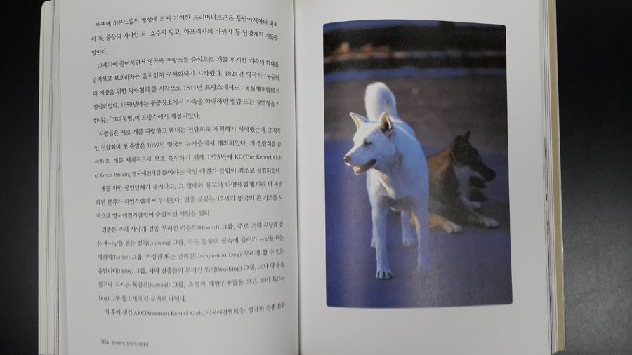 Поиск линии корешка на фотографиях книжных разворотов - 6