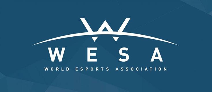 Ассоциация WESA призвана придать киберспорту более профессиональный характер