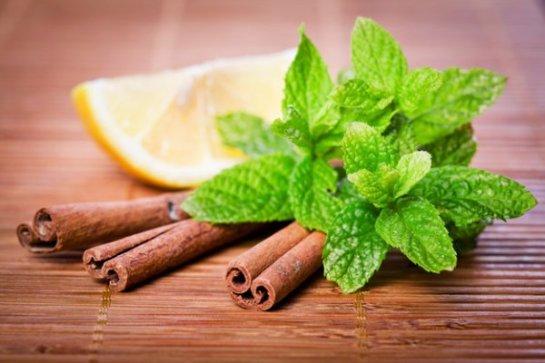 Ученые определили запах, способный сжечь 2 тысячи калорий