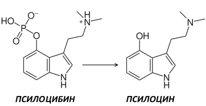 Нетрадиционные антидепрессанты - 3