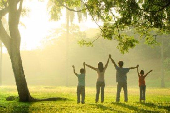 Ученые определили, что яркий свет влияет на метаболизм