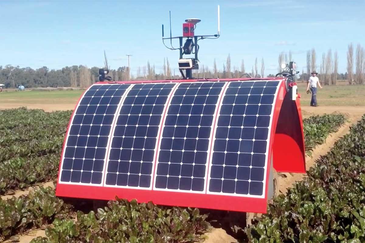 Снятся ли андроидам электроовцы? Сельскохозяйственные роботы Австралии заменяют на фермах работников-людей - 2
