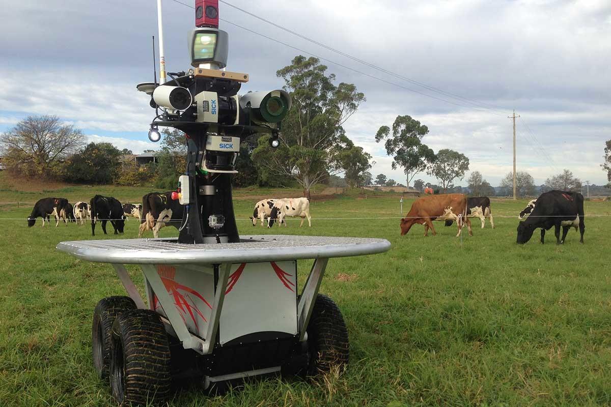 Снятся ли андроидам электроовцы? Сельскохозяйственные роботы Австралии заменяют на фермах работников-людей - 1