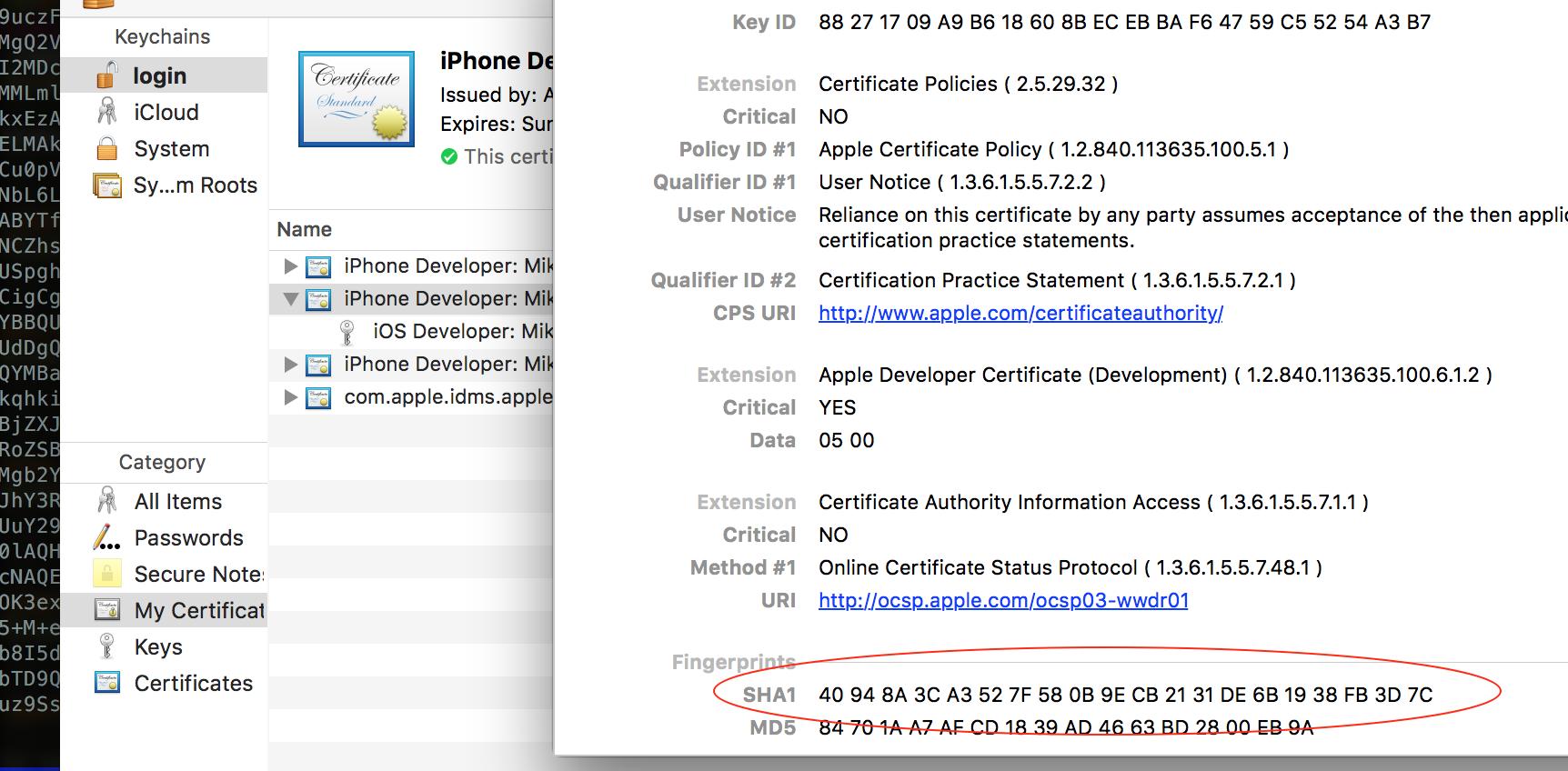 Apple, боль и сертификаты - 2