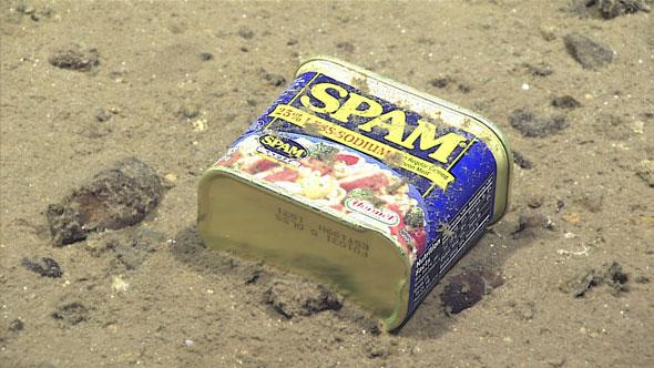 Кто проживает на дне океана? SPAM и банки из-под пива - 1