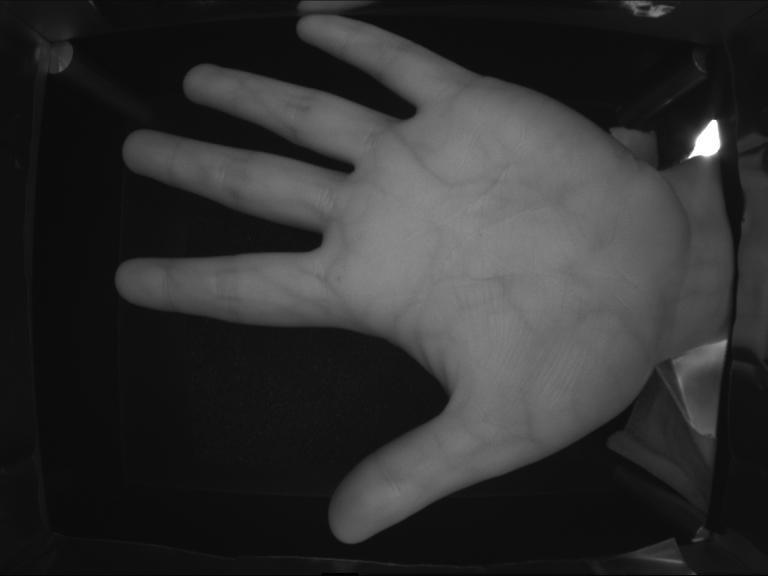 Куда движется современная биометрия - 6