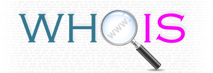 Делаем собственный сервис по определению WHOIS любого домена - 1