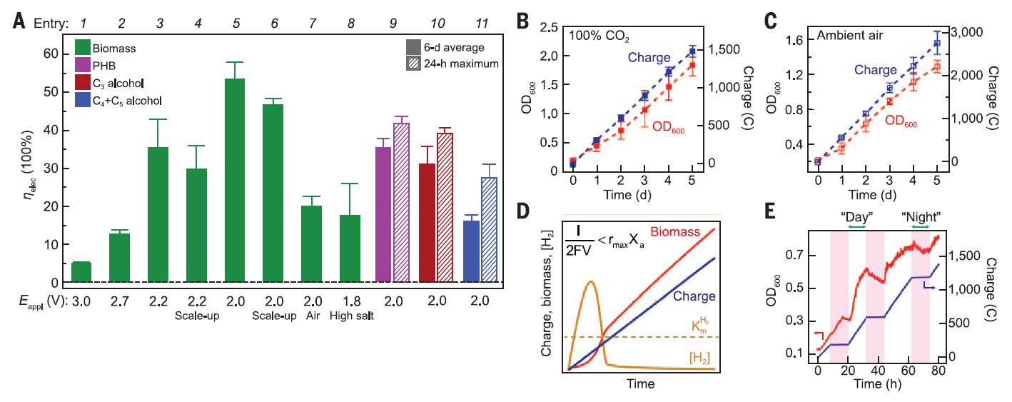 Искусственная система превзошла натуральный лист по эффективности фотосинтеза - 4