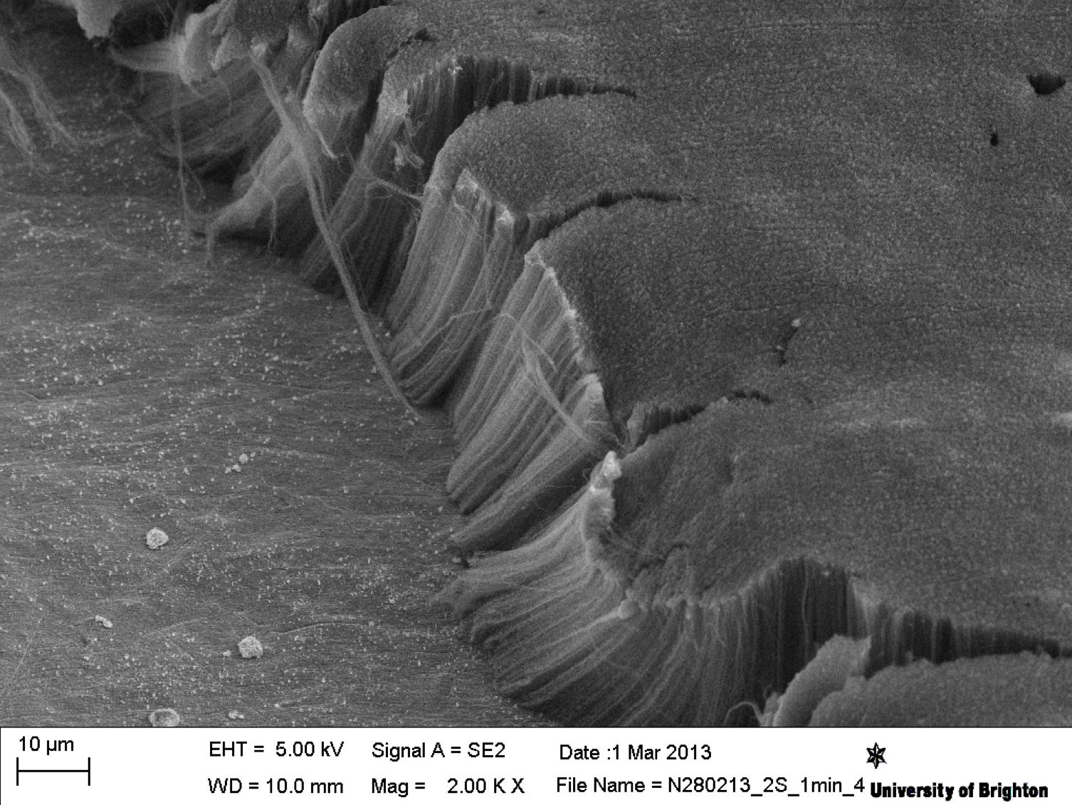 Самый черный материал на Земле не дает тонуть в воде алюминиевому диску - 2