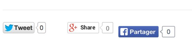 От браузерных закладок к новой эре: немного об истории развития сервисов социальных кнопок - 8