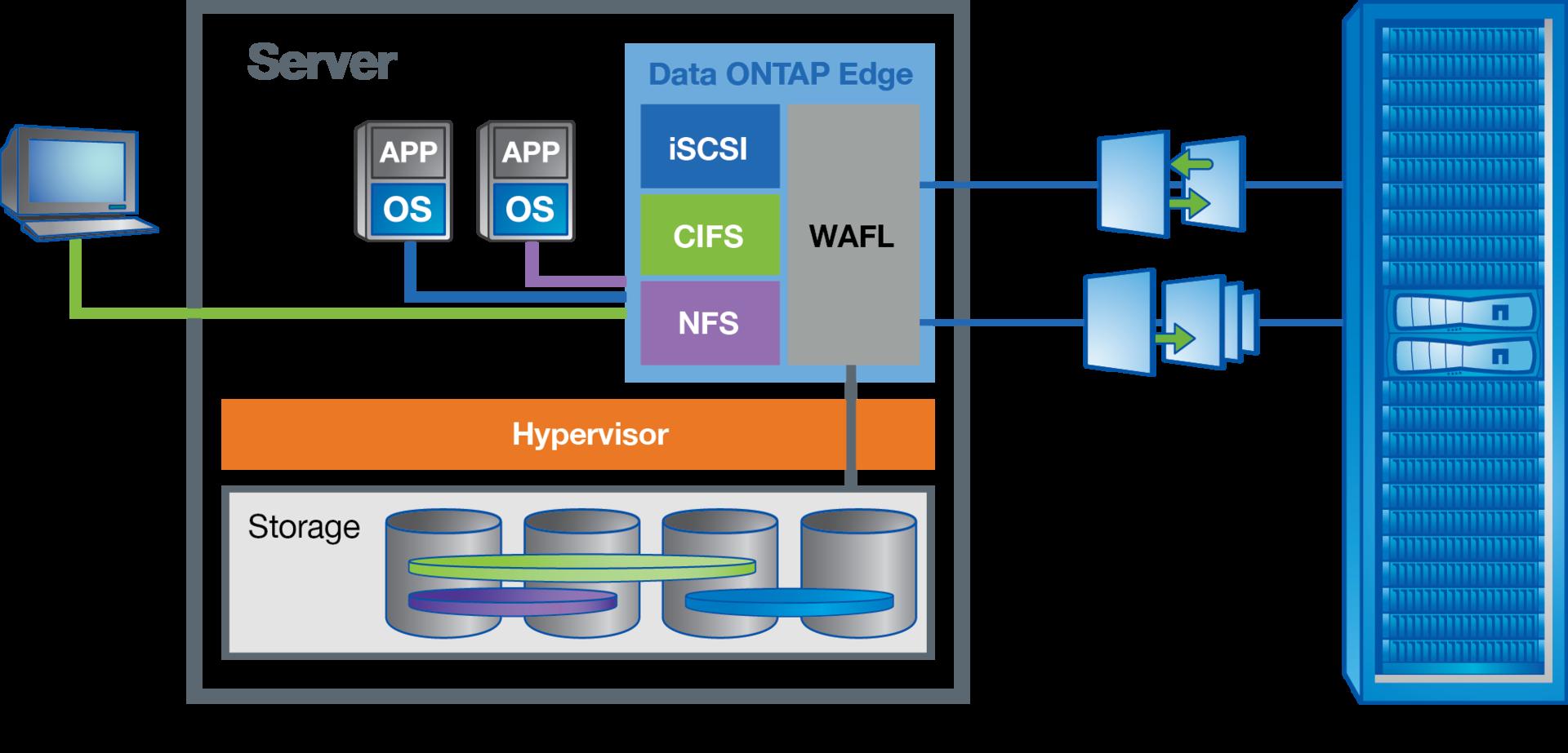 NetApp virtual storage appliance: Data ONTAP-v - 2