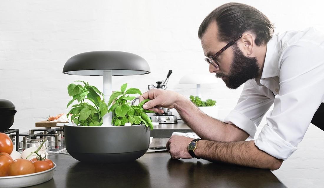 Технологии и садоводство: как ухаживать за своим дачным участком летом? - 10