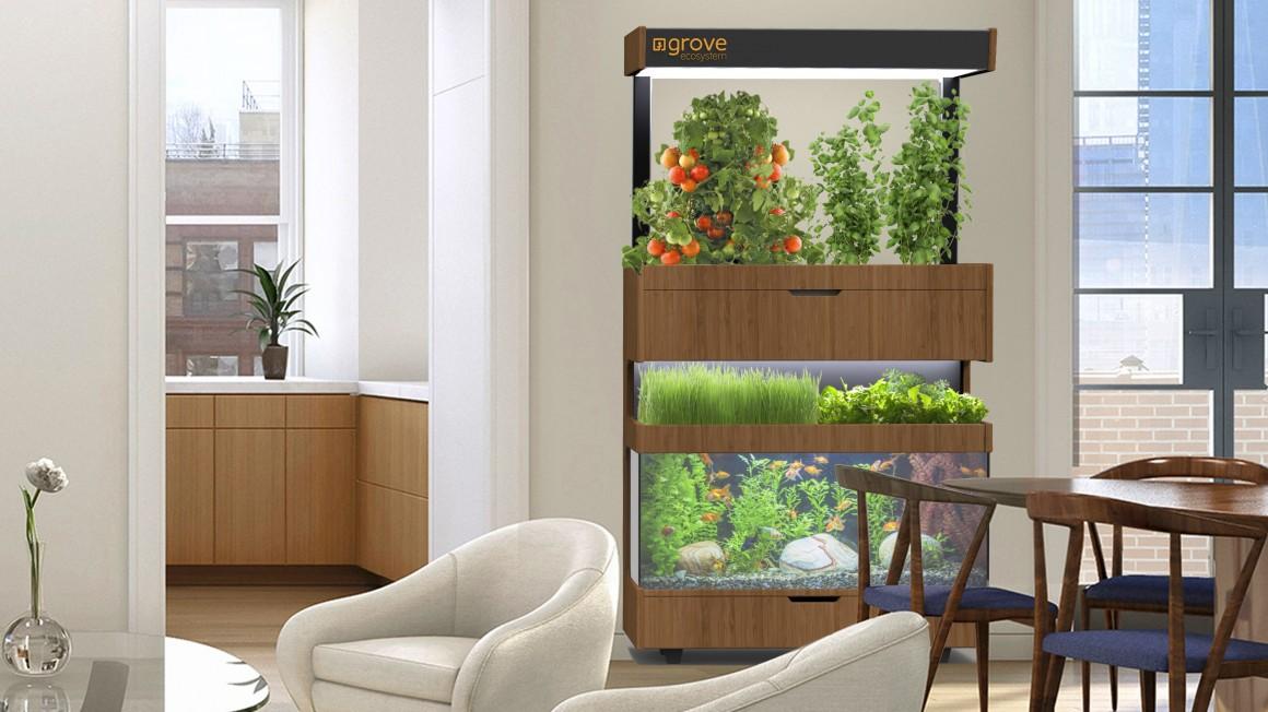 Технологии и садоводство: как ухаживать за своим дачным участком летом? - 2