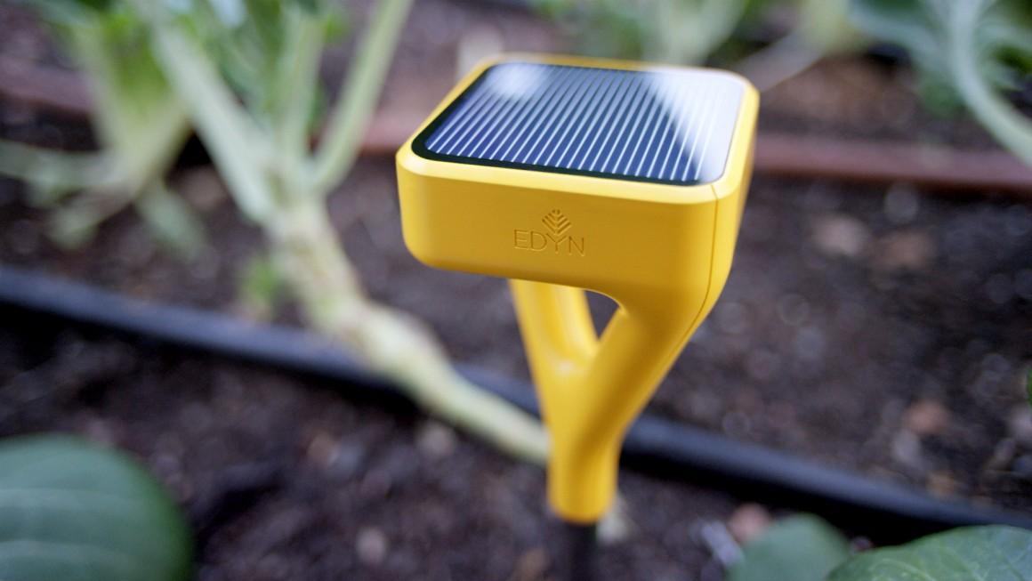 Технологии и садоводство: как ухаживать за своим дачным участком летом? - 3