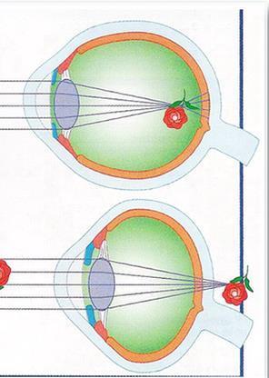 VR устройства полезнее для глаз, чем обычные экраны - 7