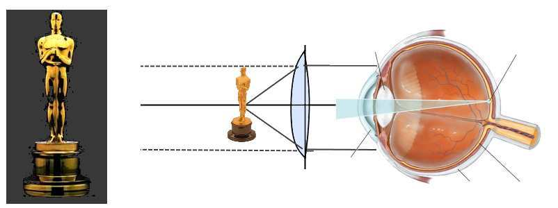VR устройства полезнее для глаз, чем обычные экраны - 9