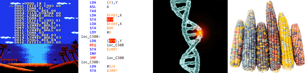 Методы модификации машинного кода: «селекция» vs. «генная инженерия» - 1