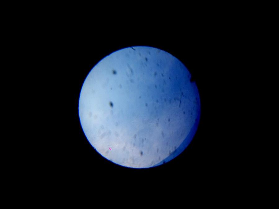 Обсерватория Энгельгардта и планетарий КФУ - 38