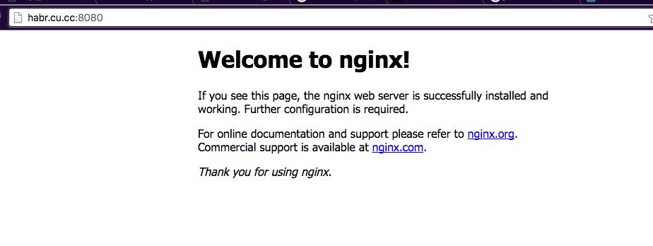 Получаем доменное имя, DNS и SSL сертификат нахаляву - 13