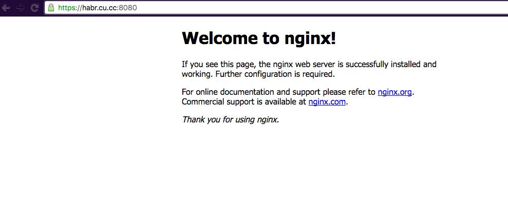 Получаем доменное имя, DNS и SSL сертификат нахаляву - 20