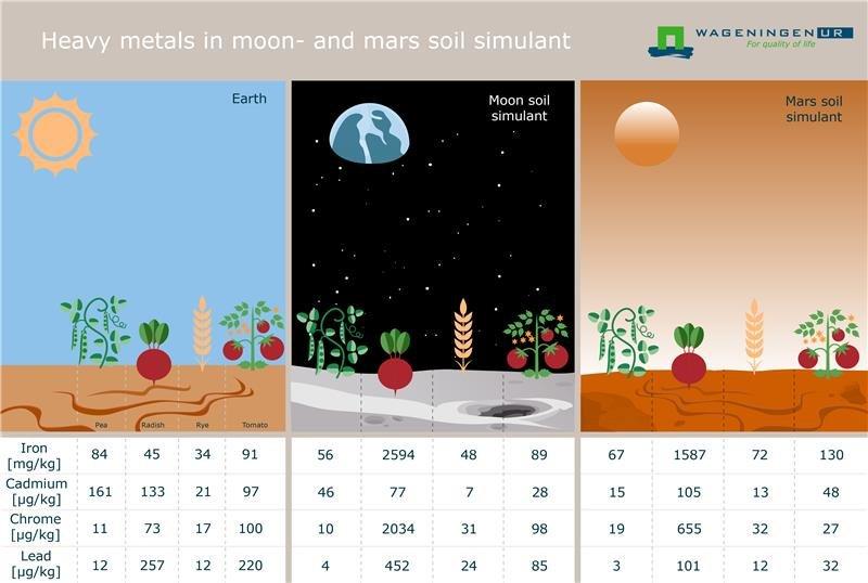 Сельское хозяйство в космосе - 18