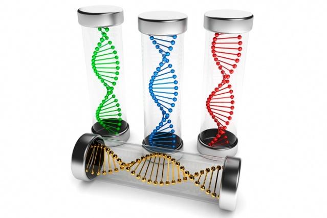 В MIT разработали программируемые под различные заболевания РНК-вакцины - 1