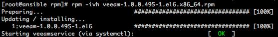 Знакомство с Veeam Agent for Linux - 4