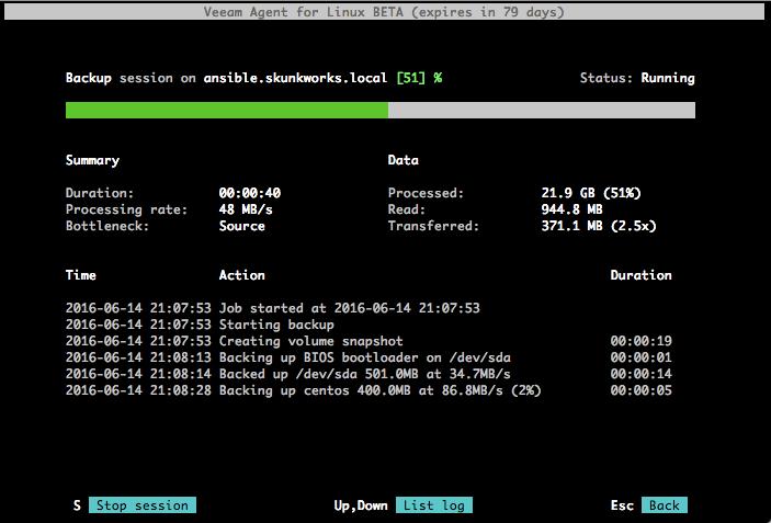 Знакомство с Veeam Agent for Linux - 7