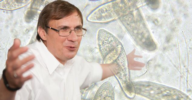 Глава русского eBay Владимир Долгов