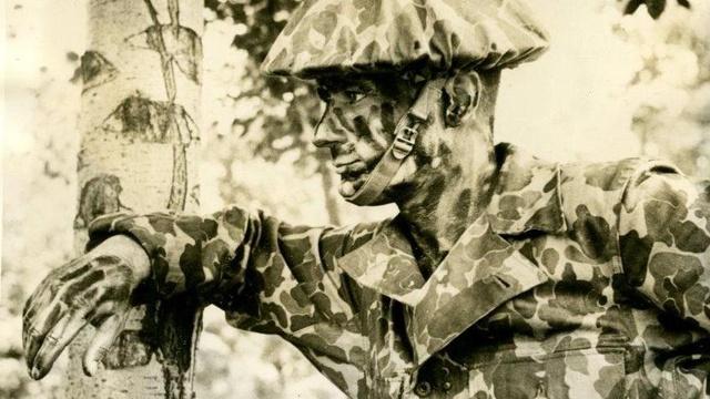 История камуфляжа и технологий «невидимости» - 9