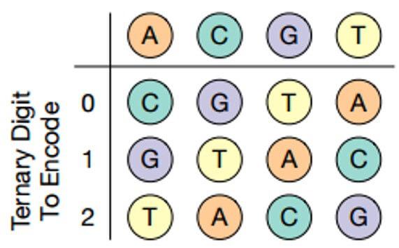 «Заложено природой»: Система хранения данных на основе ДНК - 4