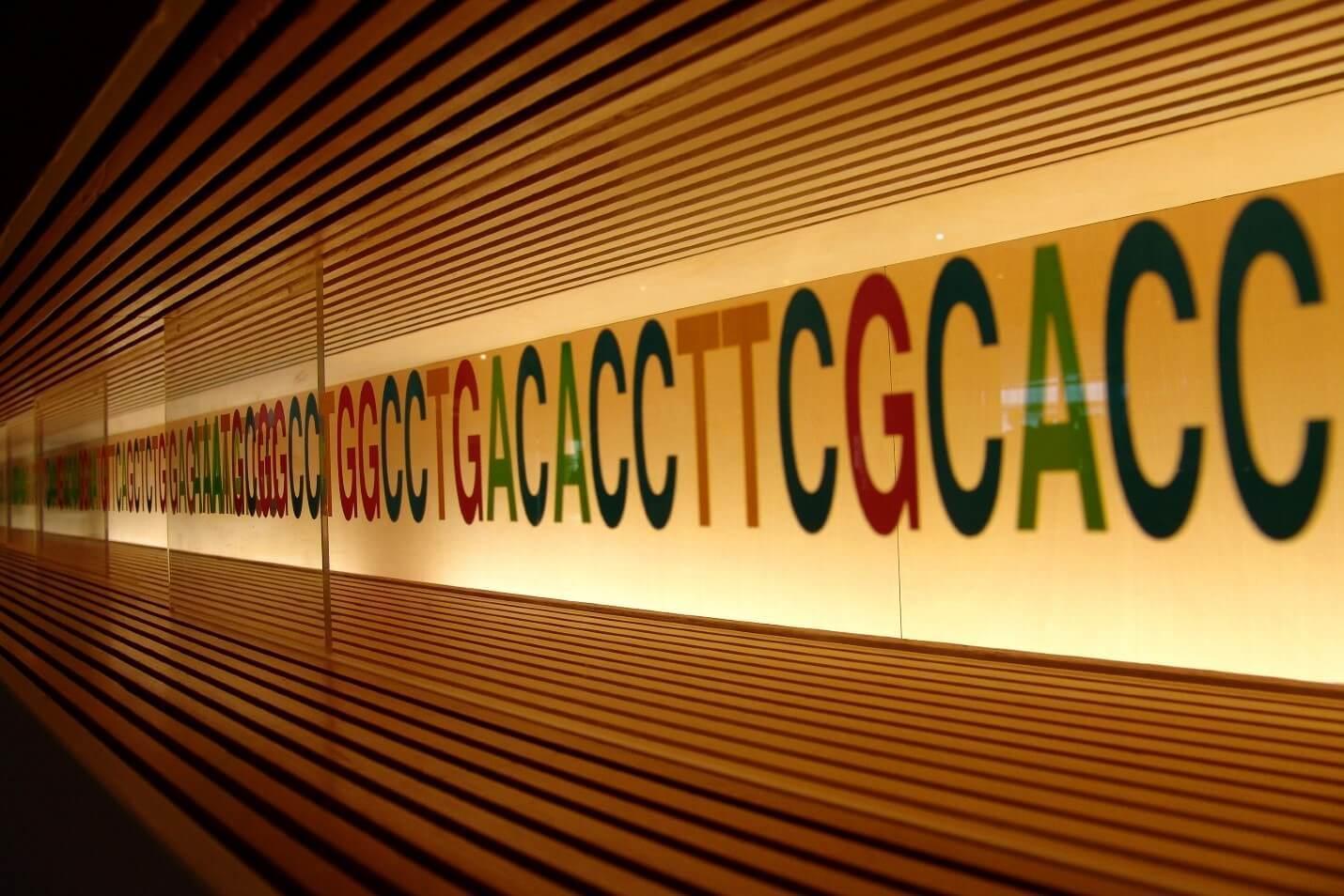 «Заложено природой»: Система хранения данных на основе ДНК - 1