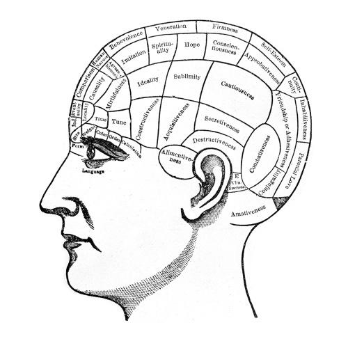 Мозг. Вводный курс: познакомьтесь с вашим хозяином и повелителем - 1