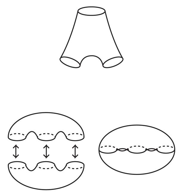 Входим в форму: от гиперболической геометрии до кубических комплексов и обратно - 9