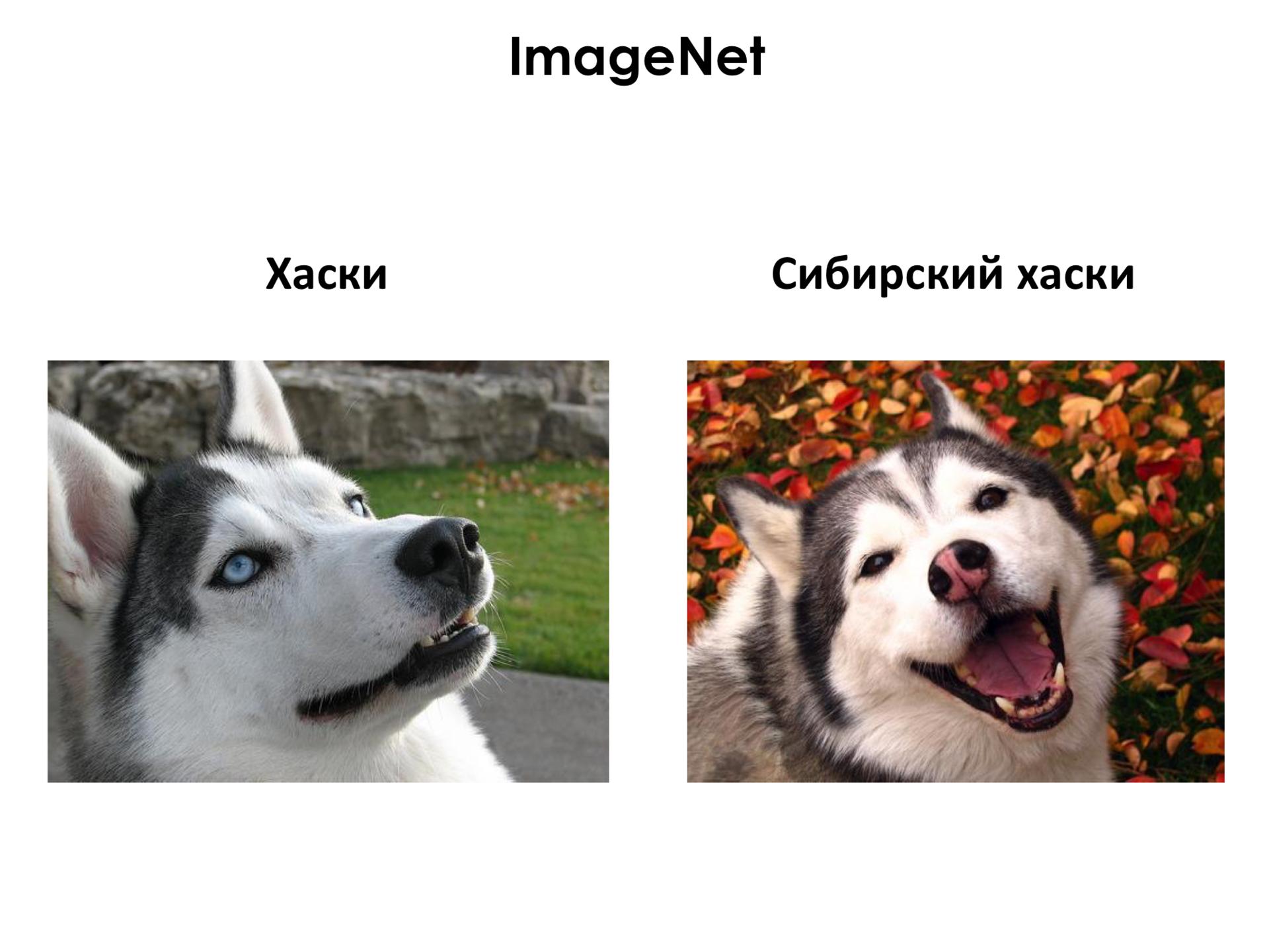 Самое главное о нейронных сетях. Лекция в Яндексе - 23