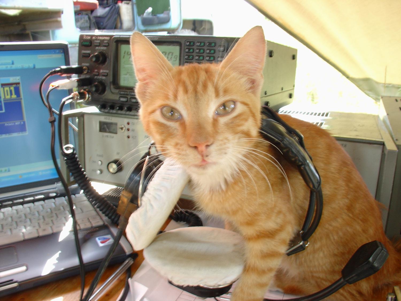 Как я стал радиолюбителем и зарегистрировал своё первое РЭС - 1