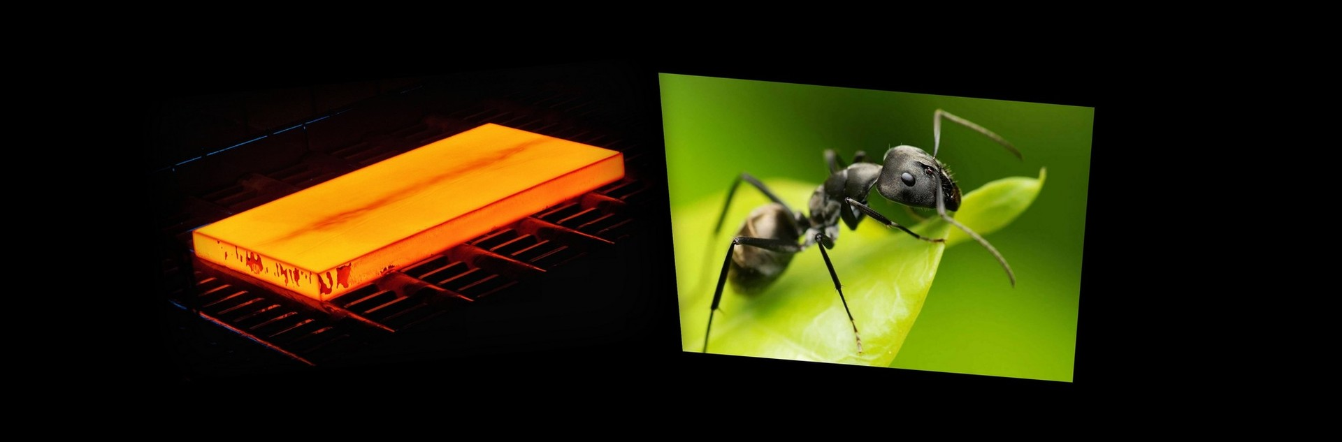 Оптимизация на примере. Имитационный отжиг против муравьиного алгоритма. Часть 1 - 1