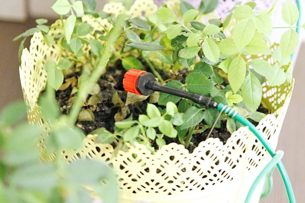 Автоматическая лейка для растений - 21