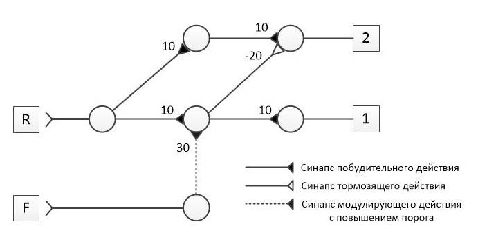 Симулятор нервной системы. Часть 2. Модулируемый нейроэлемент - 13